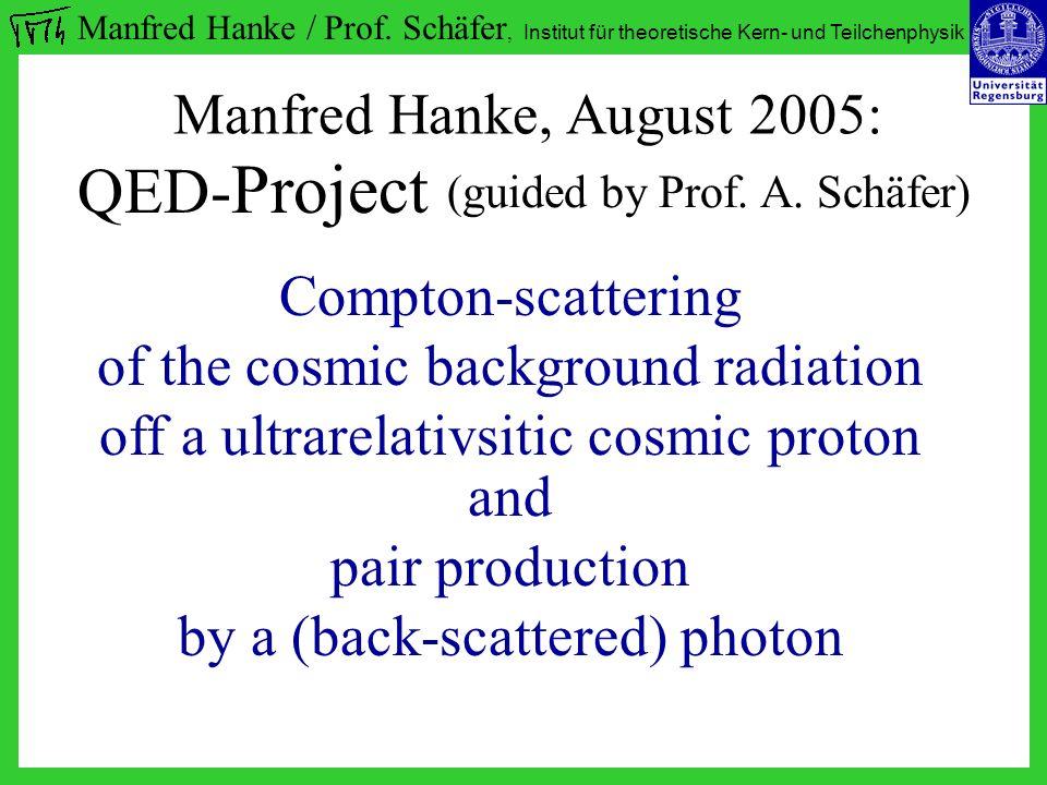 Manfred Hanke / Prof.