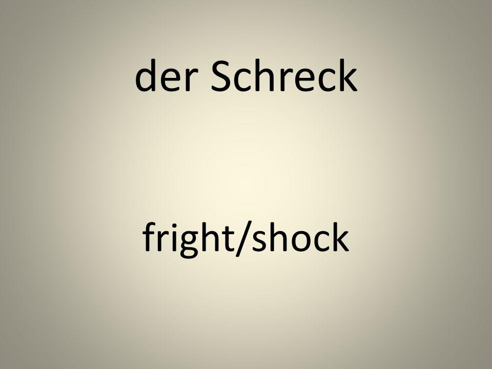 der Schreck fright/shock