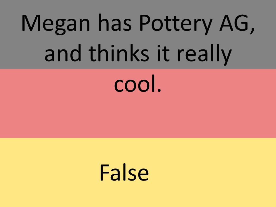 Megan has Pottery AG, and thinks it really cool. False