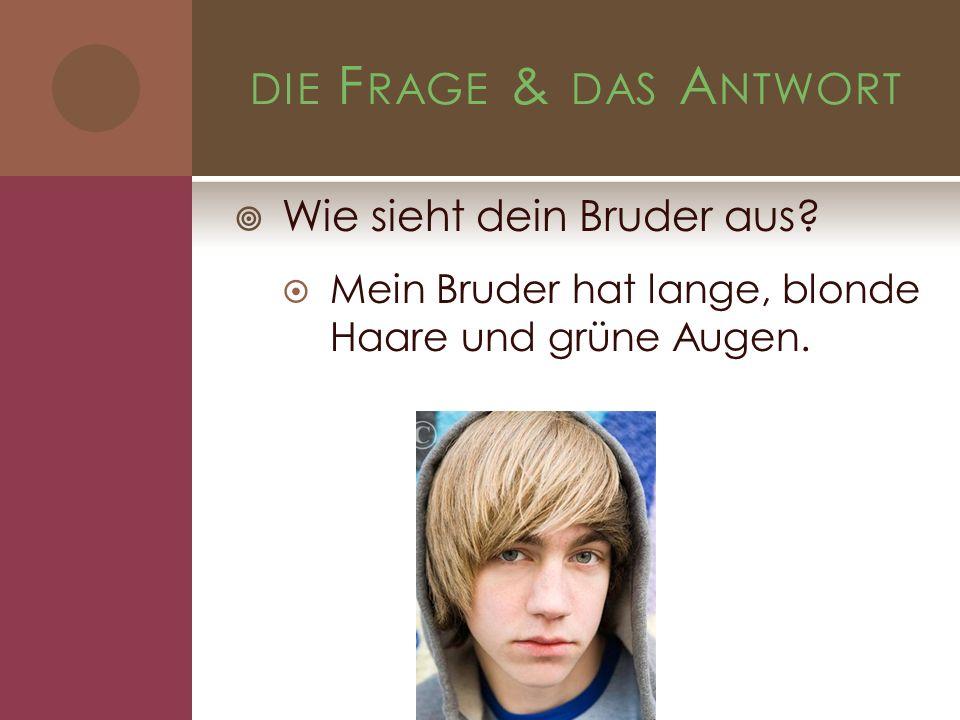 DIE F RAGE & DAS A NTWORT Wie sieht dein Bruder aus? Mein Bruder hat lange, blonde Haare und grüne Augen.