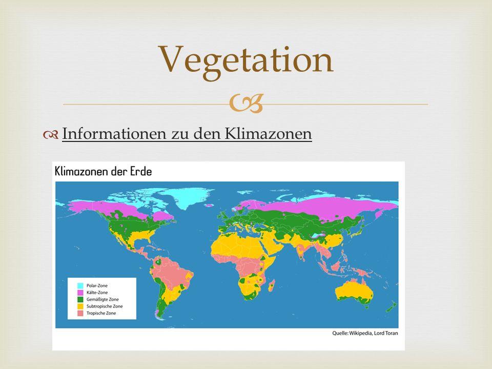Informationen zu den Klimazonen Vegetation