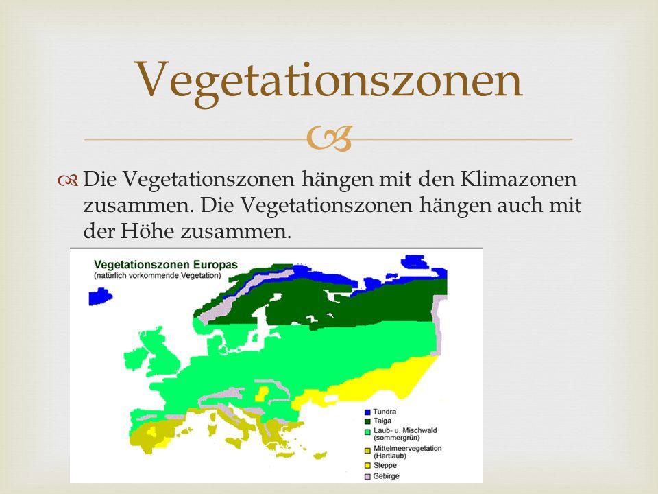 Die Vegetationszonen hängen mit den Klimazonen zusammen. Die Vegetationszonen hängen auch mit der Höhe zusammen. Vegetationszonen
