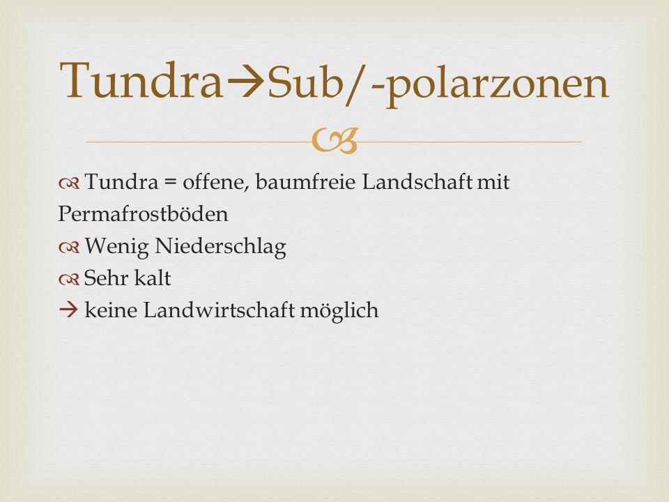 Tundra = offene, baumfreie Landschaft mit Permafrostböden Wenig Niederschlag Sehr kalt keine Landwirtschaft möglich Tundra Sub/-polarzonen