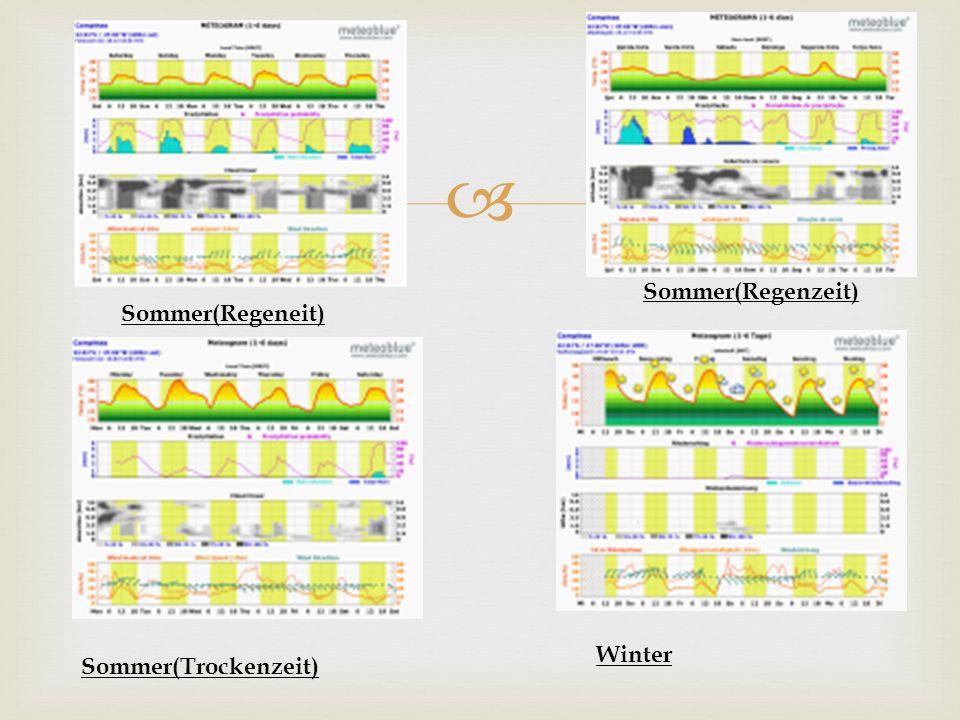 Sommer(Regenzeit) Sommer(Regeneit) Sommer(Trockenzeit) Winter