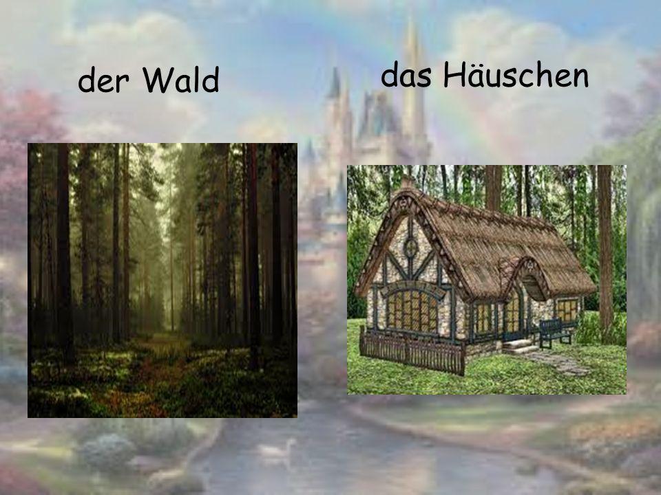 der Wald das Häuschen
