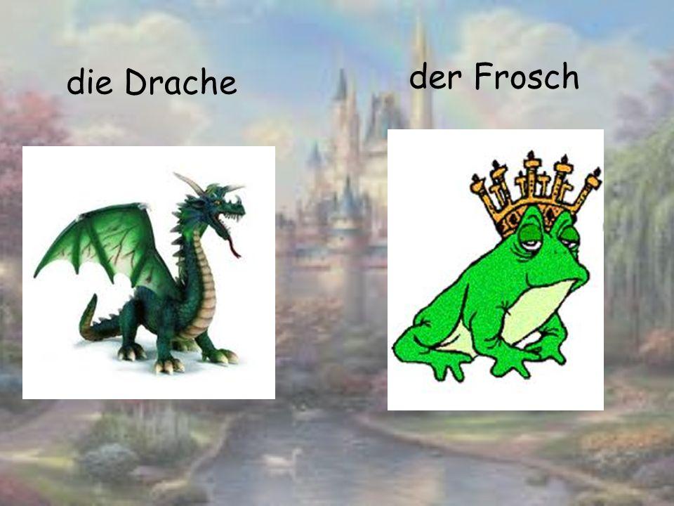 die Drache der Frosch