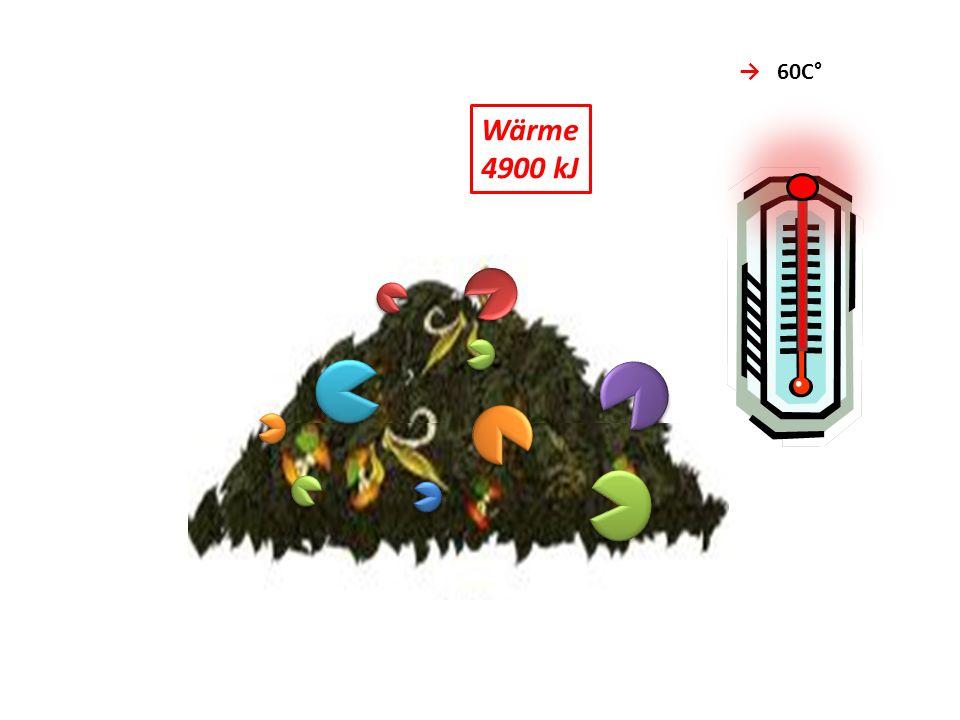 6 H 2 O + NH 3 Wasser Ammoniak 10 CO 2 Kohlendioxid CO 2 60C° Wärme 4900 kJ