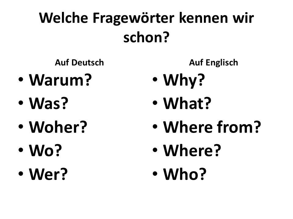Welche Fragewörter kennen wir schon? Auf Deutsch Warum? Was? Woher? Wo? Wer? Auf Englisch Why? What? Where from? Where? Who?