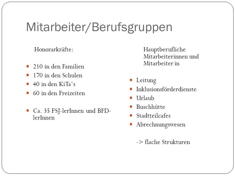 Mitarbeiter/Berufsgruppen Honorarkräfte: 210 in den Familien 170 in den Schulen 40 in den KiTas 60 in den Freizeiten Ca. 35 FSJ-lerInnen und BFD- lerI