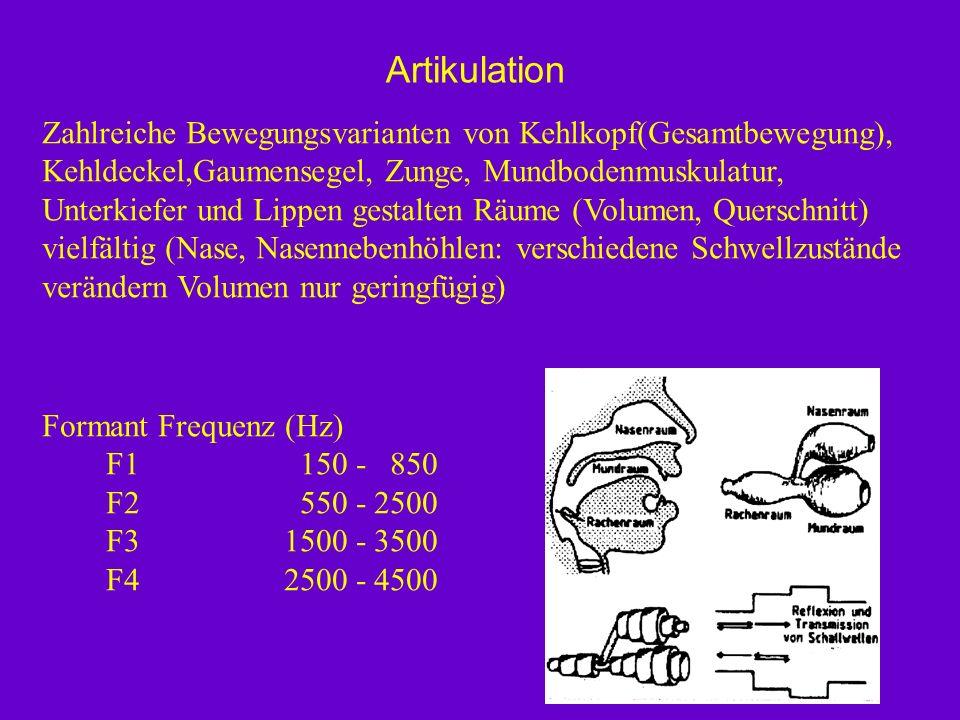 Zahlreiche Bewegungsvarianten von Kehlkopf(Gesamtbewegung), Kehldeckel,Gaumensegel, Zunge, Mundbodenmuskulatur, Unterkiefer und Lippen gestalten Räume