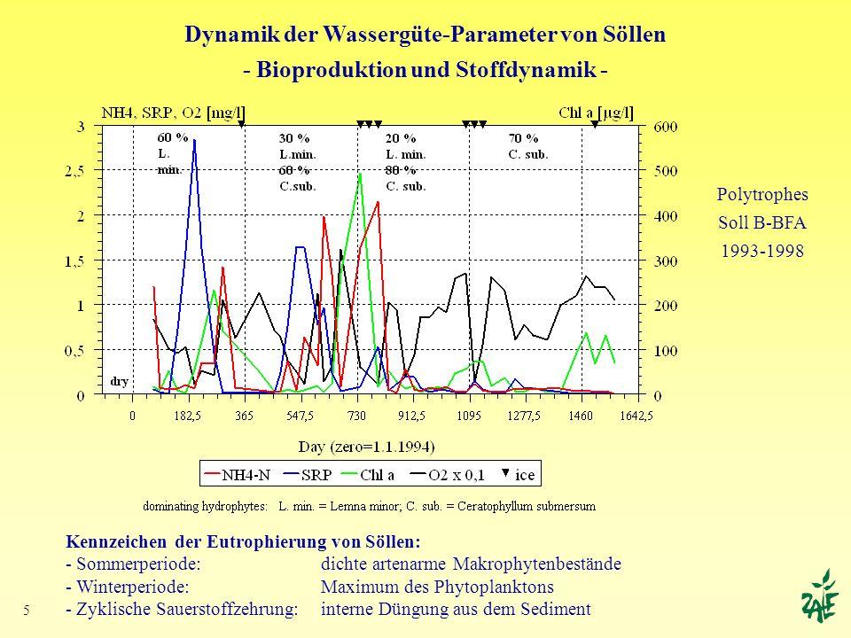 5 Dynamik der Wassergüte-Parameter von Söllen - Bioproduktion und Stoffdynamik - Kennzeichen der Eutrophierung von Söllen: - Sommerperiode: dichte art
