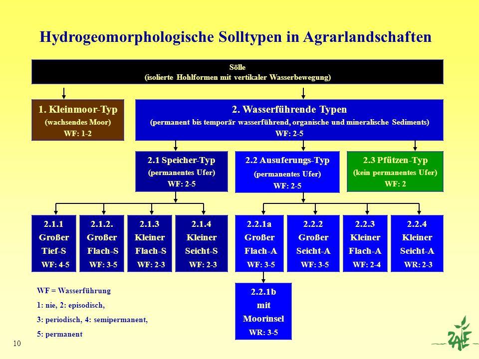 10 Sölle (isolierte Hohlformen mit vertikaler Wasserbewegung) 2. Wasserführende Typen (permanent bis temporär wasserführend, organische und mineralisc