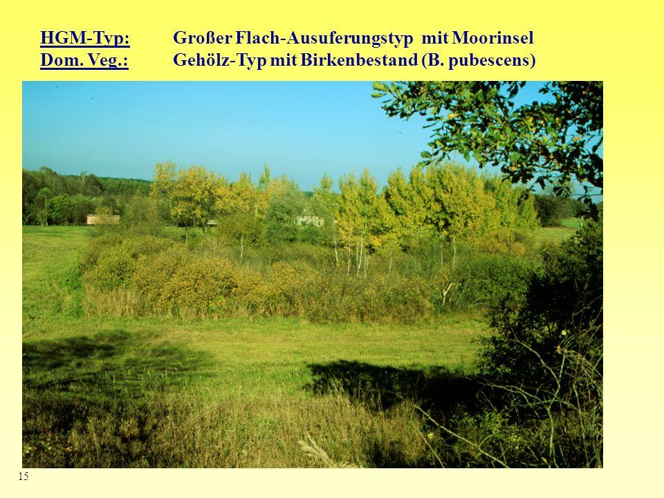 15 HGM-Typ: Großer Flach-Ausuferungstyp mit Moorinsel Dom. Veg.: Gehölz-Typ mit Birkenbestand (B. pubescens)