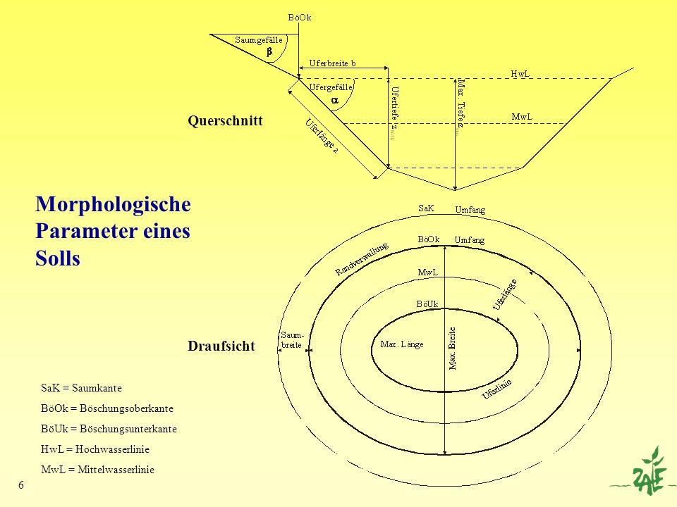 6 Morphologische Parameter eines Solls Querschnitt Draufsicht SaK = Saumkante BöOk = Böschungsoberkante BöUk = Böschungsunterkante HwL = Hochwasserlin