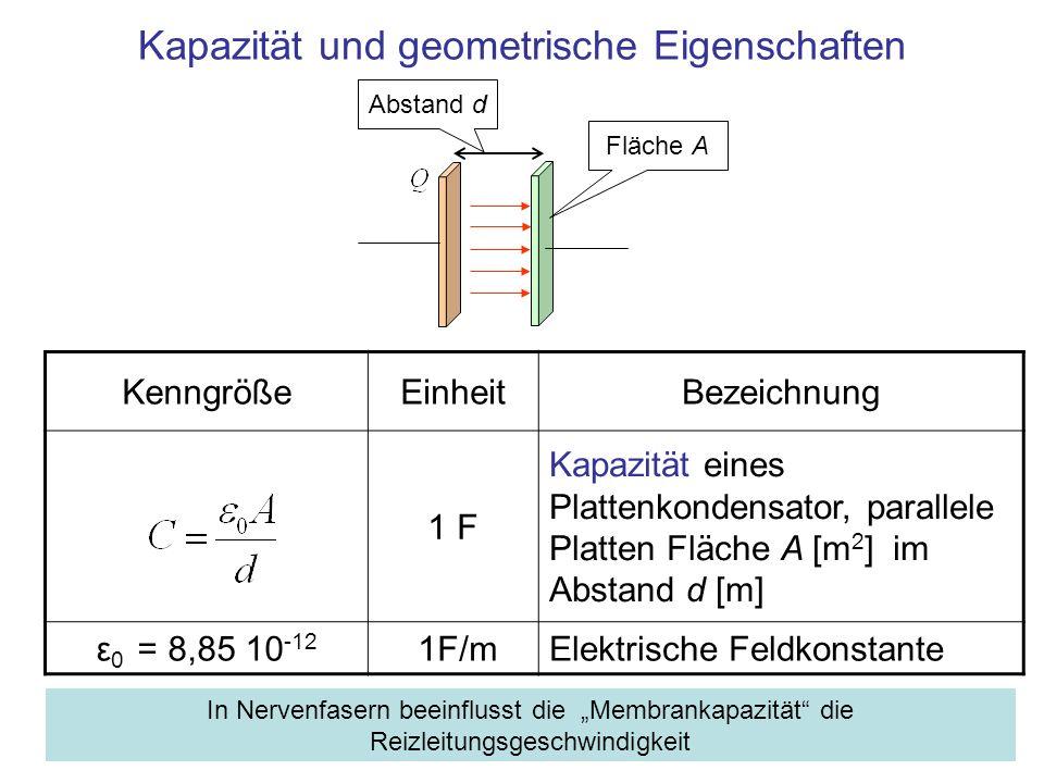 Kapazität und geometrische Eigenschaften KenngrößeEinheitBezeichnung 1 F Kapazität eines Plattenkondensator, parallele Platten Fläche A [m 2 ] im Abst