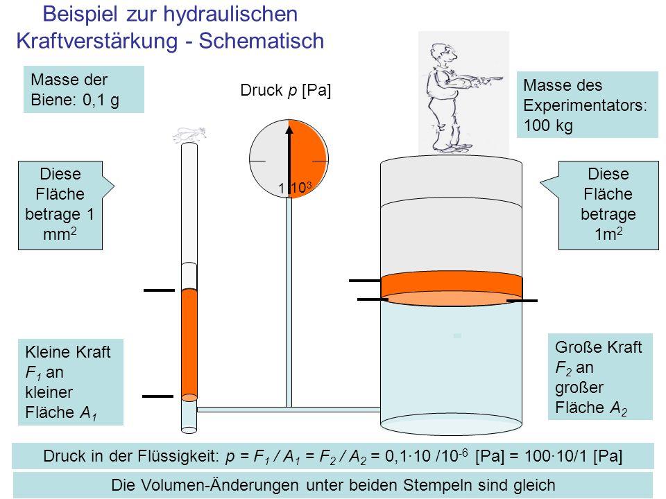 Beispiel zur hydraulischen Kraftverstärkung - Schematisch 0 Druck in der Flüssigkeit: p = F 1 / A 1 = F 2 / A 2 = 0,1·10 /10 -6 [Pa] = 100·10/1 [Pa] 10 3 1 Druck p [Pa] Die Volumen-Änderungen unter beiden Stempeln sind gleich Diese Fläche betrage 1 mm 2 Diese Fläche betrage 1m 2 Masse der Biene: 0,1 g Masse des Experimentators: 100 kg Kleine Kraft F 1 an kleiner Fläche A 1 Große Kraft F 2 an großer Fläche A 2