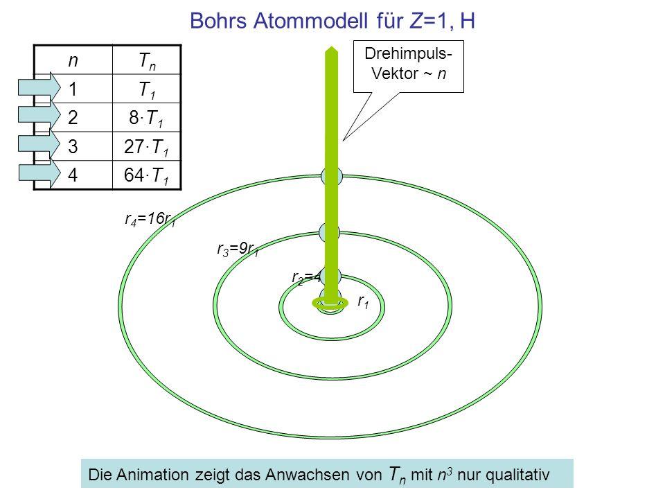 Bohrs Atommodell für Z=1, H r1r1 r 2 =4r 1 r 3 =9r 1 r 4 =16r 1 nTnTn 1T1T1 28·T18·T1 327·T 1 464·T 1 Die Animation zeigt das Anwachsen von T n mit n