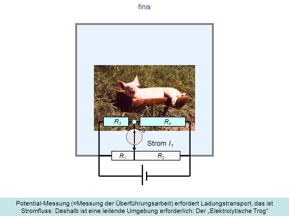 finis Potential-Messung (=Messung der Überführungsarbeit) erfordert Ladungstransport, das ist Stromfluss: Deshalb ist eine leitende Umgebung erforderl