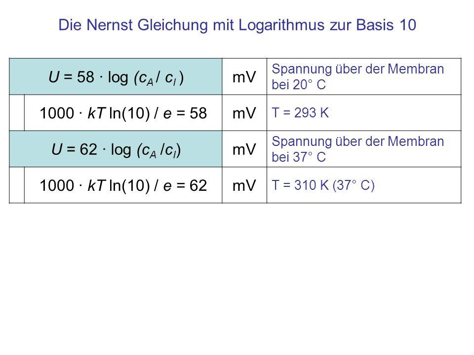 Die Nernst Gleichung mit Logarithmus zur Basis 10 U = 58 · log (c A / c I )mV Spannung über der Membran bei 20° C 1000 · kT ln(10) / e = 58mV T = 293