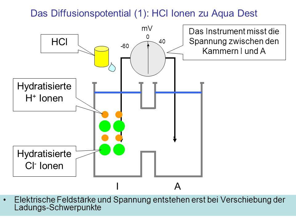 Das Diffusionspotential (1): HCl Ionen zu Aqua Dest Elektrische Feldstärke und Spannung entstehen erst bei Verschiebung der Ladungs-Schwerpunkte HCl m