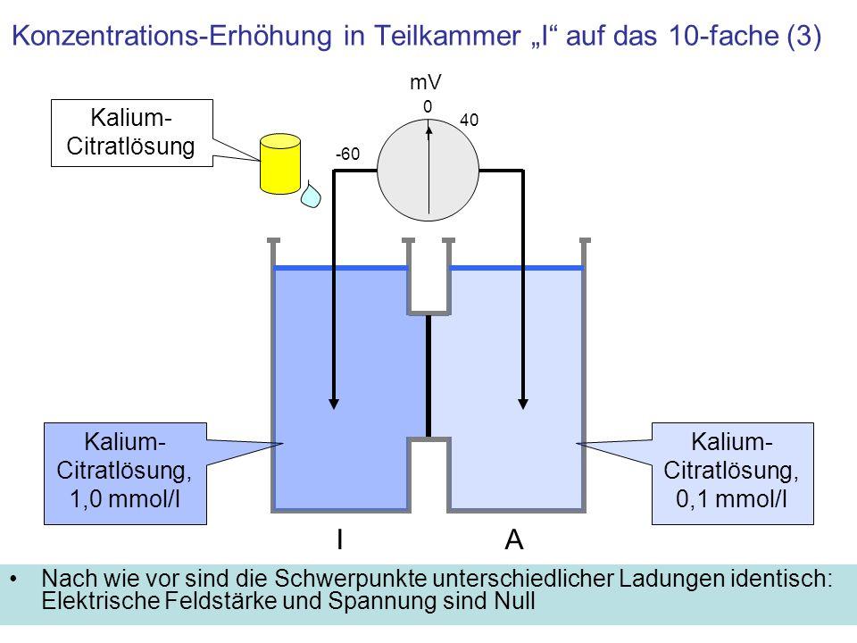 Konzentrations-Erhöhung in Teilkammer I auf das 10-fache (3) Nach wie vor sind die Schwerpunkte unterschiedlicher Ladungen identisch: Elektrische Feld