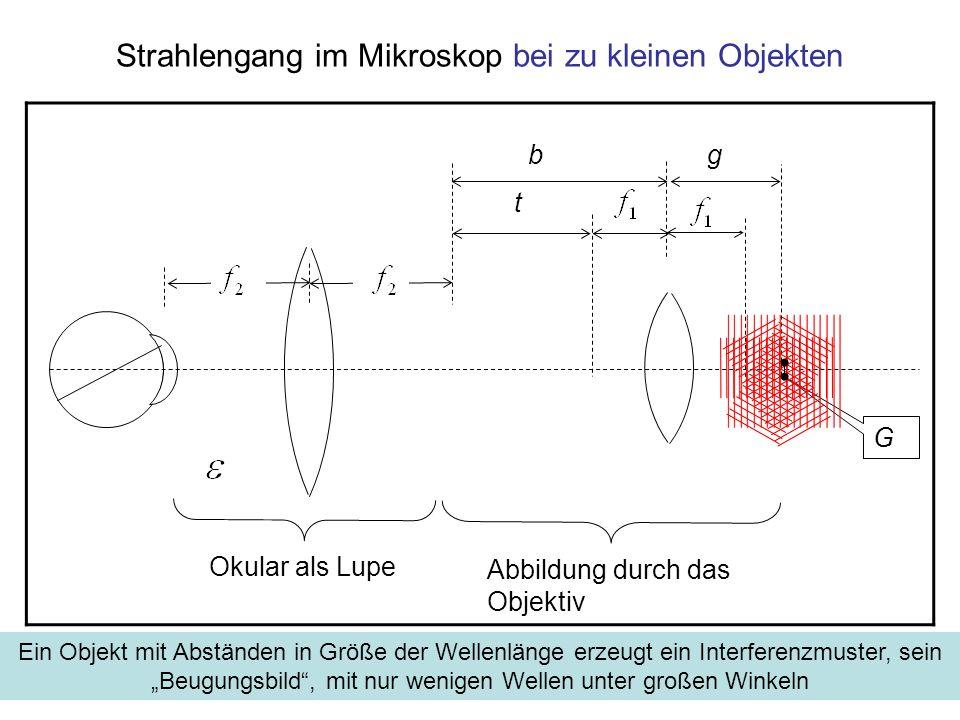 Strahlengang im Mikroskop bei zu kleinen Objekten G Okular als Lupe t gb Abbildung durch das Objektiv Ein Objekt mit Abständen in Größe der Wellenläng