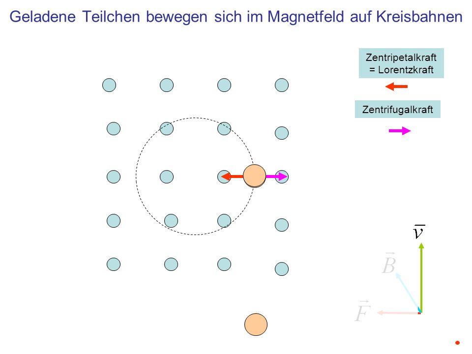 Zentripetalkraft = Lorentzkraft Zentrifugalkraft Geladene Teilchen bewegen sich im Magnetfeld auf Kreisbahnen