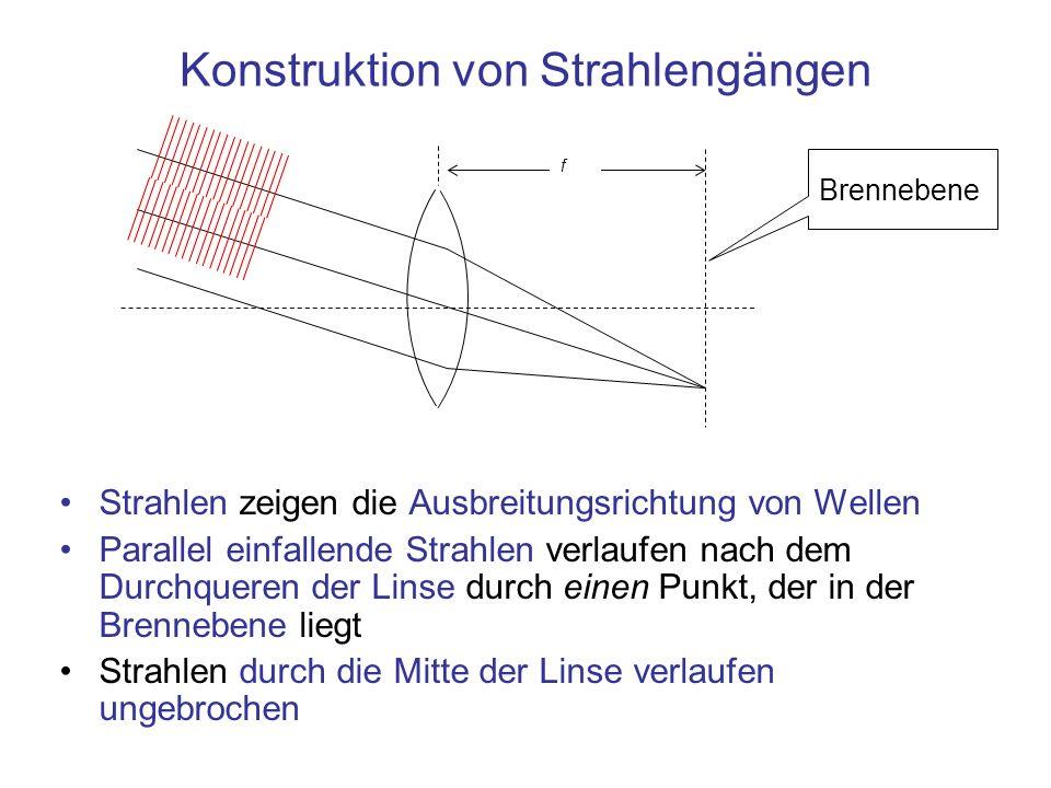 Konstruktion von Strahlengängen Strahlen zeigen die Ausbreitungsrichtung von Wellen Parallel einfallende Strahlen verlaufen nach dem Durchqueren der L