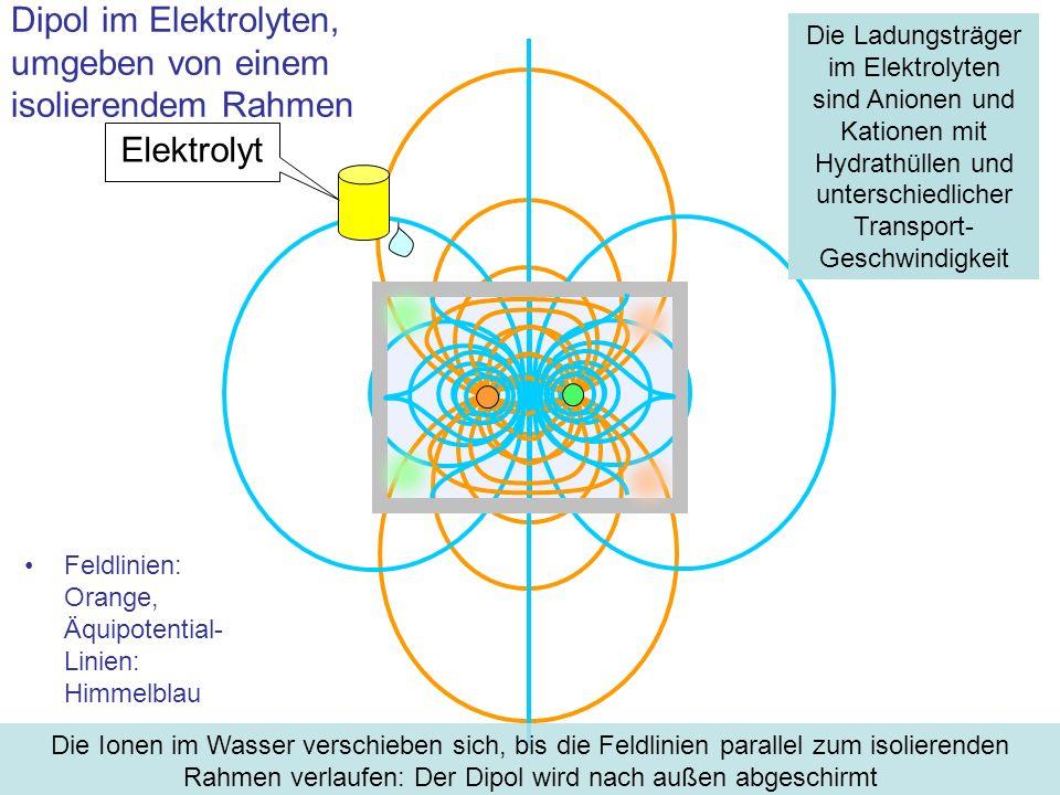 Feldlinien: Orange, Äquipotential- Linien: Himmelblau Dipol im Elektrolyten, umgeben von einem isolierendem Rahmen Elektrolyt Die Ionen im Wasser vers