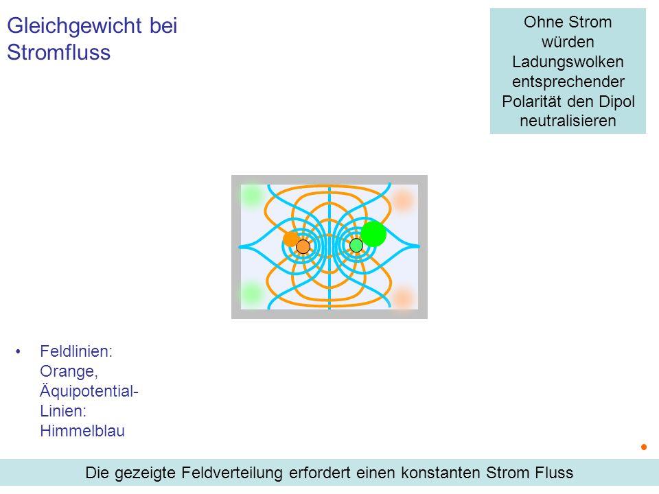 Feldlinien: Orange, Äquipotential- Linien: Himmelblau Gleichgewicht bei Stromfluss Die gezeigte Feldverteilung erfordert einen konstanten Strom Fluss