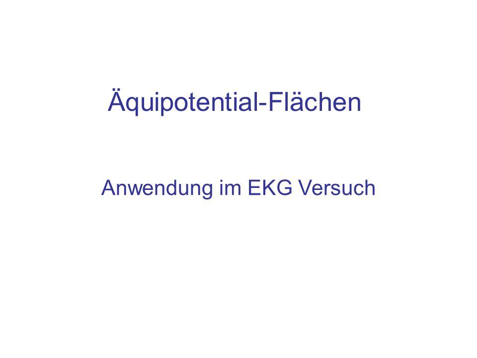 Äquipotential-Flächen Anwendung im EKG Versuch