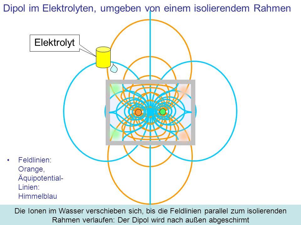 Dipol im Elektrolyten, umgeben von einem isolierendem Rahmen Elektrolyt Die Ionen im Wasser verschieben sich, bis die Feldlinien parallel zum isoliere