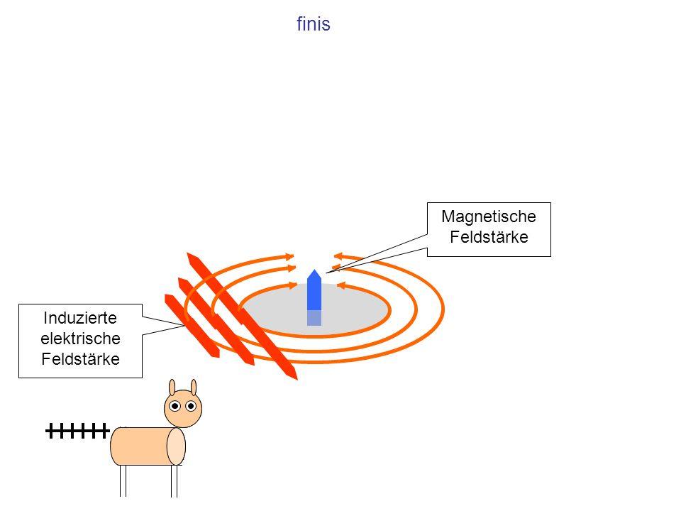 Induzierte elektrische Feldstärke Magnetische Feldstärke finis