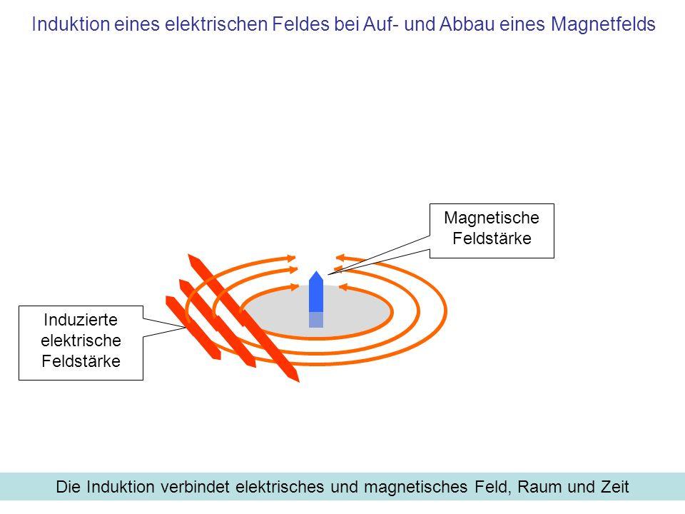 Induzierte elektrische Feldstärke Magnetische Feldstärke Induktion eines elektrischen Feldes bei Auf- und Abbau eines Magnetfelds Die Induktion verbin