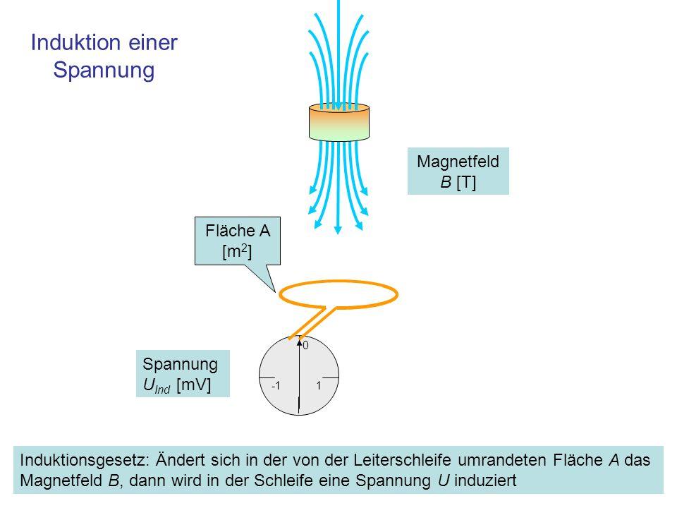 1 V Fläche A Das Magnetfeld B ändere sich Das Induktionsgesetz: Induktion bei Änderung eines Magnetfeldes 1 0 Wird das Magnetfeld verändert, dann wird in der Umrandung der vom Magnetfeld durchfluteten Fläche A [m 2 ] eine Spannung induziert.