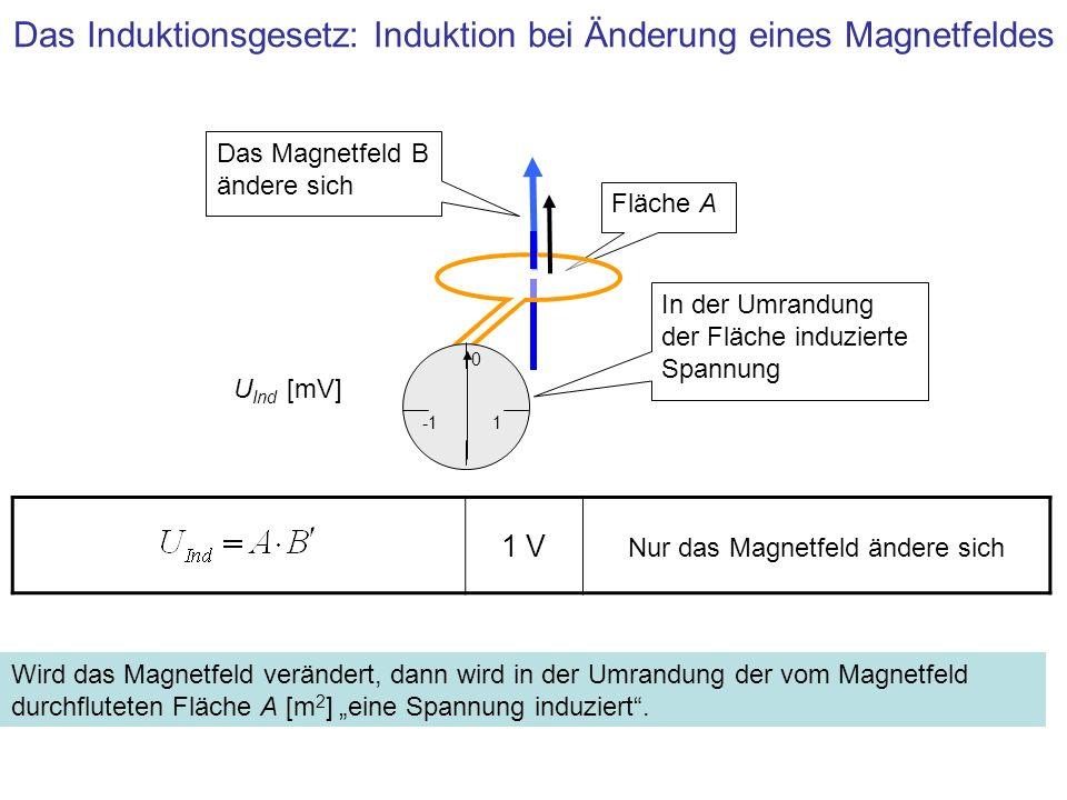 Induktion eines Stromes Strom I Ind [A] Die induzierte Spannung erzeugt im geschlossenen Ring einen Strom, der auch bei konstantem Magnetfeld weiter fließt, aber durch den ohmschen Widerstand des Leiters abnimmt Magnetfeld B [T] 1 0