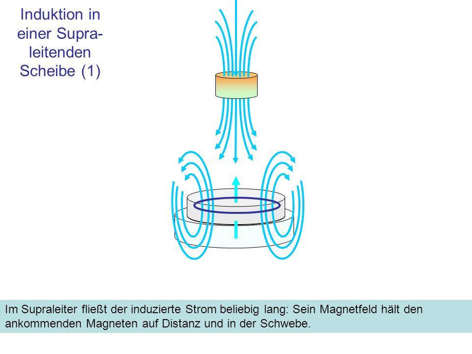 Induktion in einer Supra- leitenden Scheibe (2) Der Schwebezustand ist Folge einer Eigenart der Supraleiter: Die magnetischen Feldlinien sind im Gitter lokalisiert und bis zu einem gewissen Grad fixiert.