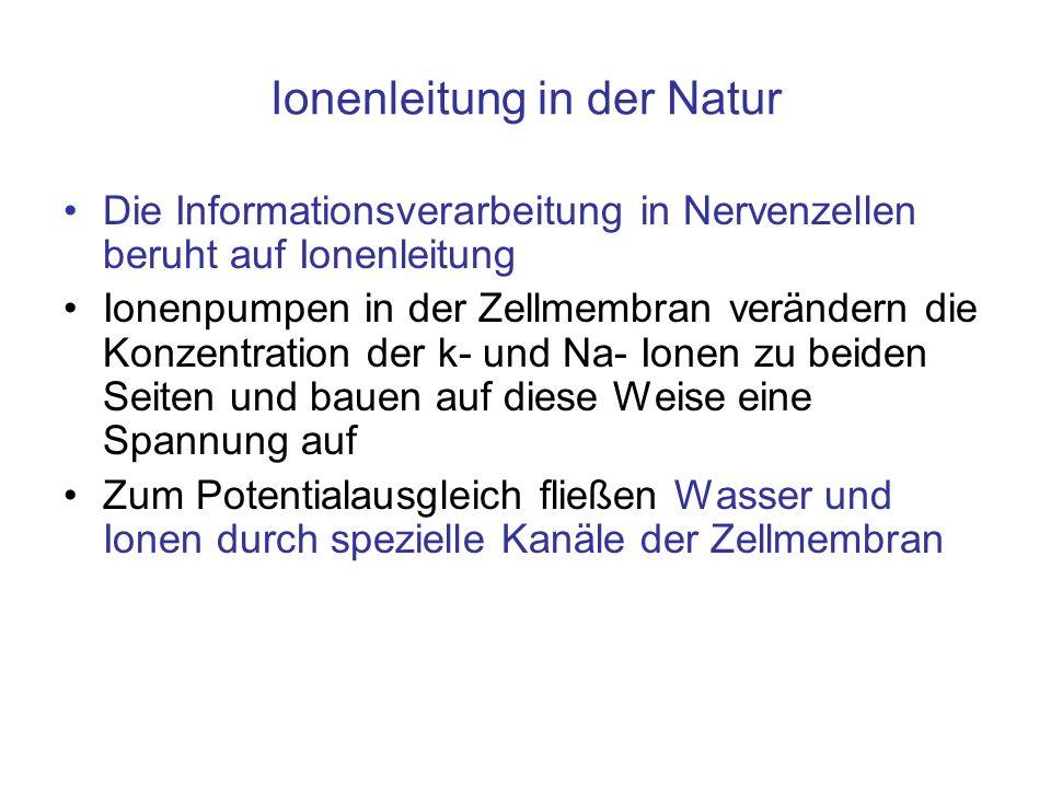 Ionenleitung in der Natur Die Informationsverarbeitung in Nervenzellen beruht auf Ionenleitung Ionenpumpen in der Zellmembran verändern die Konzentrat