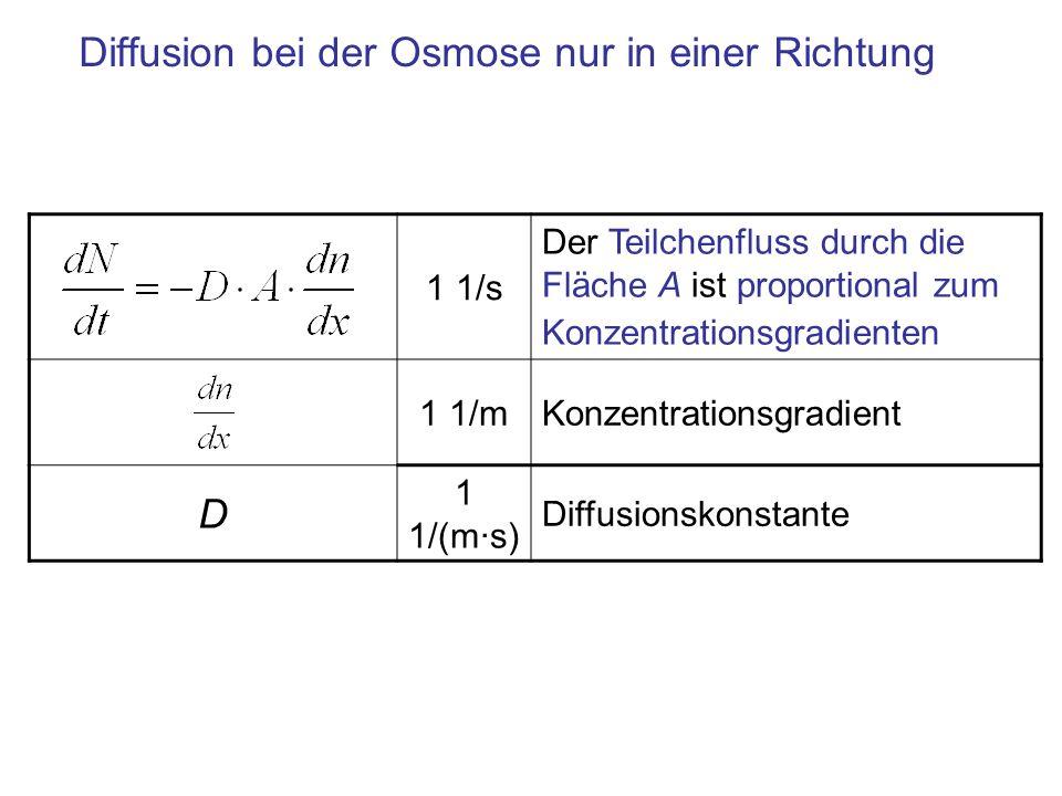 Diffusion bei der Osmose nur in einer Richtung 1 1/s Der Teilchenfluss durch die Fläche A ist proportional zum Konzentrationsgradienten 1 1/mKonzentra