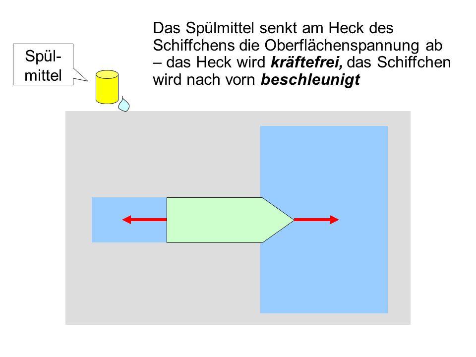 Das Spülmittel senkt am Heck des Schiffchens die Oberflächenspannung ab – das Heck wird kräftefrei, das Schiffchen wird nach vorn beschleunigt Spül- mittel