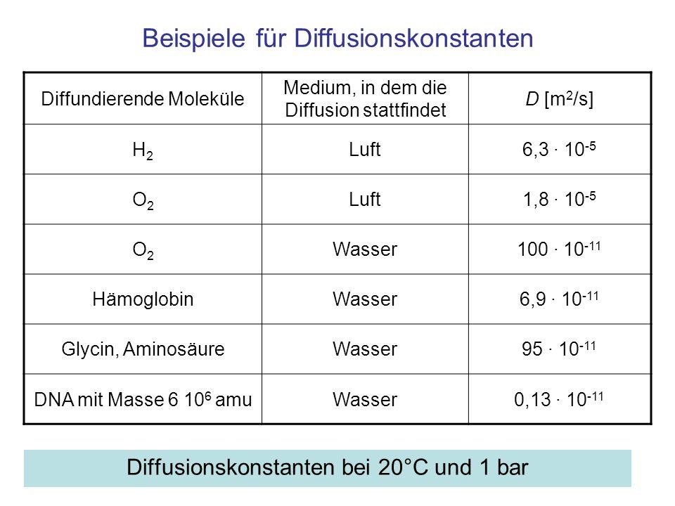 Beispiele für Diffusionskonstanten Diffusionskonstanten bei 20°C und 1 bar Diffundierende Moleküle Medium, in dem die Diffusion stattfindet D [m 2 /s]