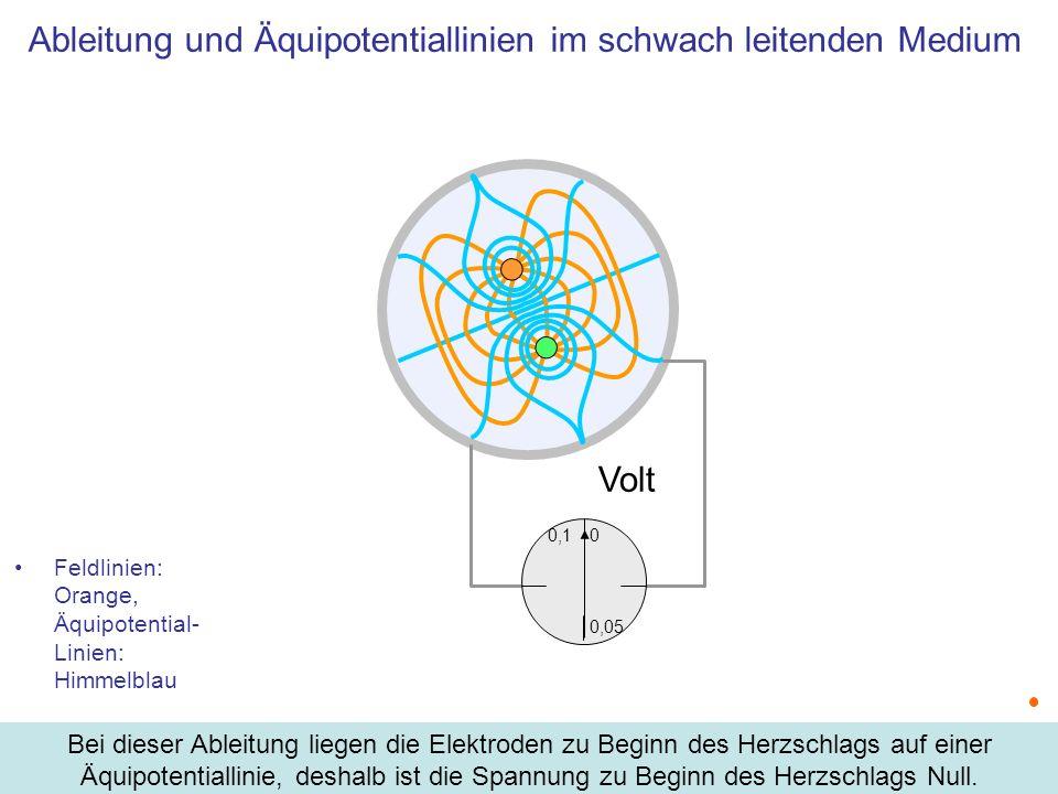 Zusammenfassung Die Ladungsverteilung im Herzen wird durch einen Dipol angenähert Die zeitliche Variation der Ladungsverteilung führt zu Zeit- und Ort-abhängiger Feldstärke Im EKG werden die Potentiale an drei Punkten aufgezeichnet