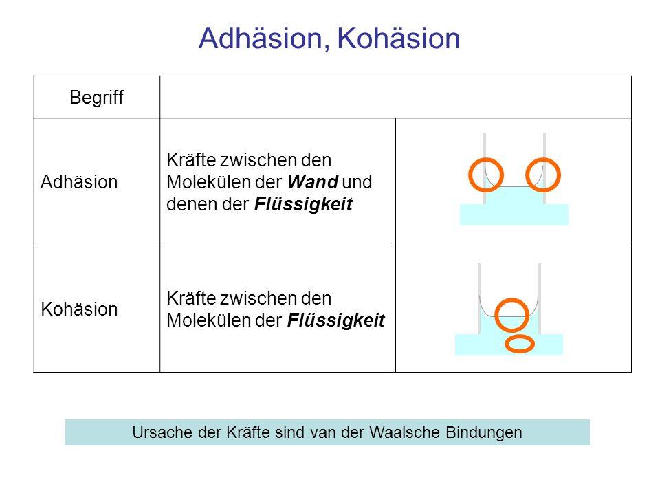 Begriff Adhäsion Kräfte zwischen den Molekülen der Wand und denen der Flüssigkeit Kohäsion Kräfte zwischen den Molekülen der Flüssigkeit Adhäsion, Koh
