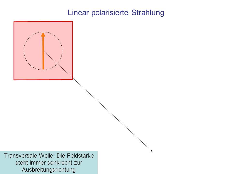Ein Wellenfeld, senkrecht polarisiert Summe der Vektoren der Feldstärken: Linear polarisierte Strahlung ExEx EyEy