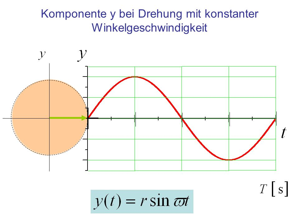 Komponente y bei Drehung mit konstanter Winkelgeschwindigkeit