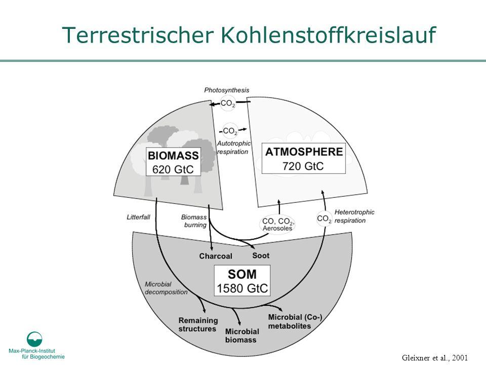 Terrestrischer Kohlenstoffkreislauf Gleixner et al., 2001