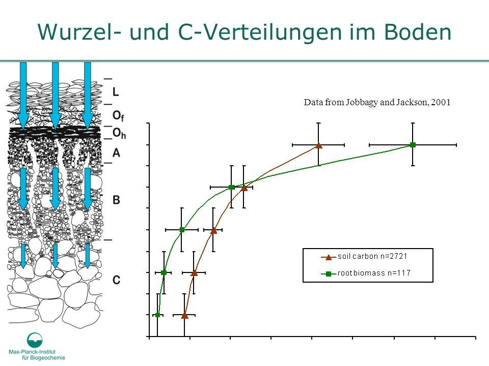 Wurzel- und C-Verteilungen im Boden Data from Jobbagy and Jackson, 2001
