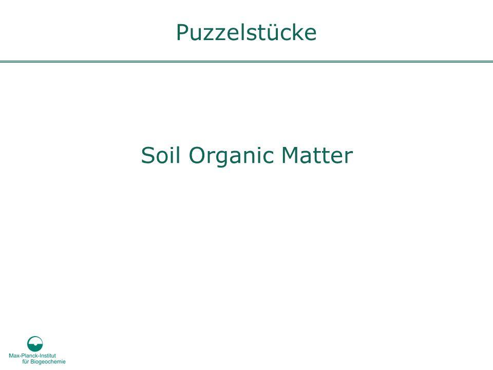 Soil Organic Matter Puzzelstücke