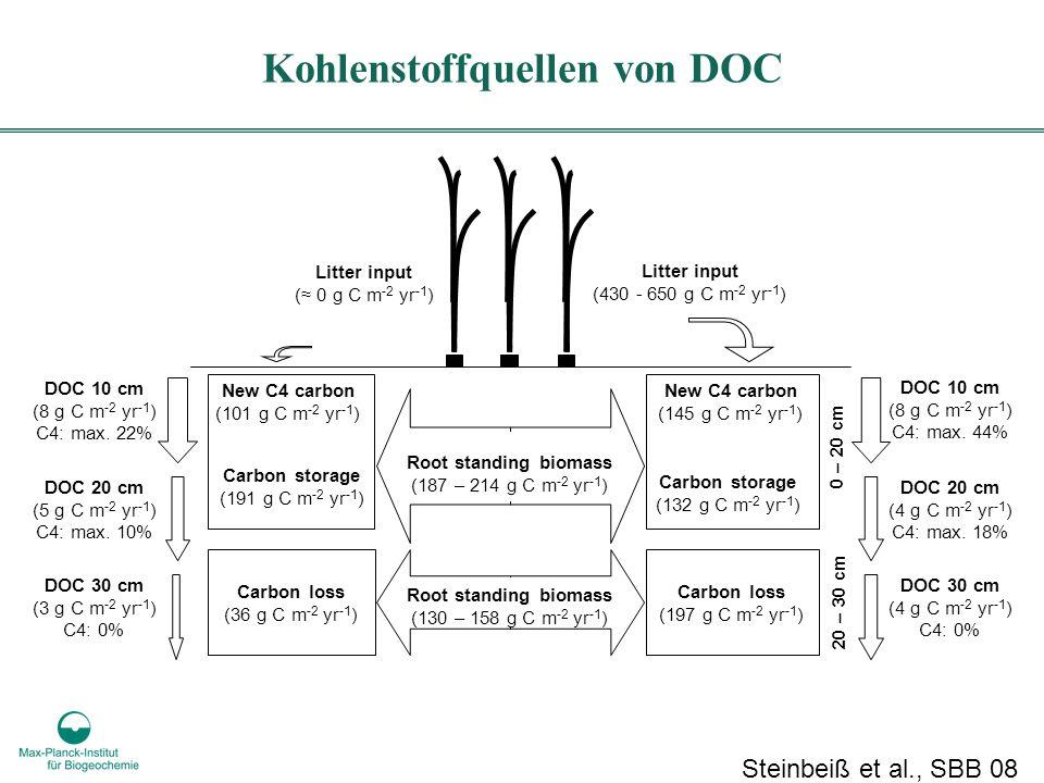 Carbon loss (36 g C m -2 yr -1 ) Carbon storage (191 g C m -2 yr -1 ) Litter input ( 0 g C m -2 yr -1 ) Carbon storage (132 g C m -2 yr -1 ) Litter input (430 - 650 g C m -2 yr -1 ) Root standing biomass (130 – 158 g C m -2 yr -1 ) Carbon loss (197 g C m -2 yr -1 ) New C4 carbon (101 g C m -2 yr -1 ) New C4 carbon (145 g C m -2 yr -1 ) 0 – 20 cm 20 – 30 cm DOC 30 cm (4 g C m -2 yr -1 ) C4: 0% DOC 20 cm (4 g C m -2 yr -1 ) C4: max.