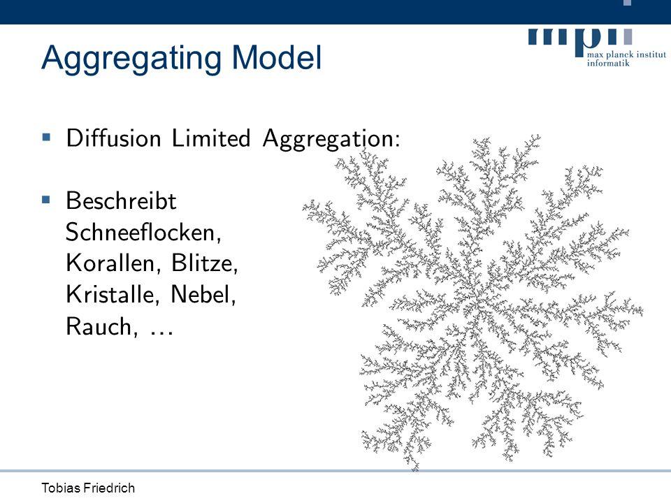 Tobias Friedrich Aggregating Model Diffusion Limited Aggregation: Beschreibt Schneeflocken, Korallen, Blitze, Kristalle, Nebel, Rauch, …